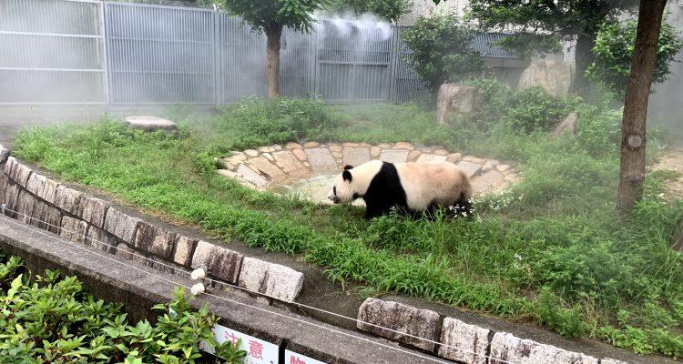 oji-zoo-kobe-sightseeing